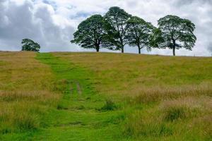 Beau paysage à Lyme Park Estate, Peak District, Royaume-Uni photo