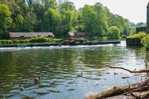 Canards nager dans l'usure de la rivière et des bâtiments traditionnels à Durham, Royaume-Uni photo