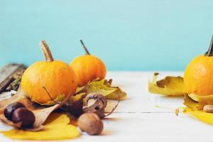 mini citrouilles avec des feuilles tombées jaunes, sur fond sarcelle fond d'automne avec espace de copie photo