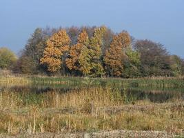 Couleurs d'automne à la réserve naturelle de Staveley North Yorkshire Angleterre photo