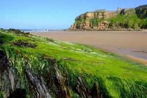 Tynemouth Long Sands sur la côte nord-est de l'Angleterre photo