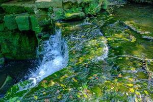 Flux d'eau avec des feuilles mortes flottantes dans le parc Jesmond dene à Newcastle-upon-tyne, Royaume-Uni photo
