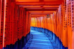 Portes torii rouges dans le sanctuaire fushimi inari, kyoto japon 2014 photo