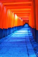 Portes torii rouges dans le sanctuaire fushimi inari à kyoto au japon photo