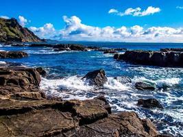 le long du rivage et autour de la ville. île aux chèvres, nouvelle-zélande photo