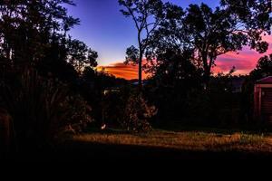 soleil couchant sur la cour arrière. ranui, auckland, nouvelle-zélande photo