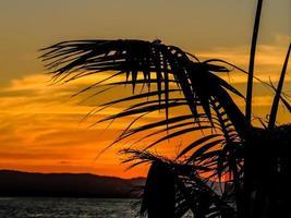 coucher de soleil sur Iron Cove près du quai de Birkenhead au coucher du soleil. Auckland, Nouvelle-Zélande photo