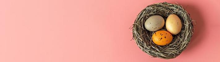 oeufs de pâques dans un nid naturel avec des oeufs d'oiseaux sur fond rose. vue d'en haut.banner photo