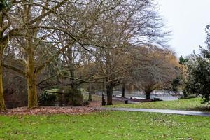 vues en se promenant autour de l'étang de canard de source occidentale, auckland, nouvelle-zélande photo