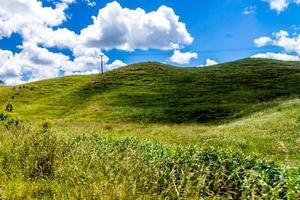 de grands panoramas autour de dargaville, nouvelle-zélande photo