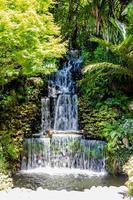 une promenade dans les jardins botaniques du parc pukekura. nouveau plymouth, taranaki, nouvelle-zélande photo