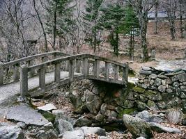 vieux pont sous un ruisseau dans la forêt du parc national de seoraksan. Corée du Sud photo