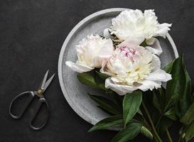 Fleurs de pivoine sur fond de béton noir photo