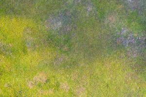 vue aérienne de dessus de la texture de l'herbe naturelle photo