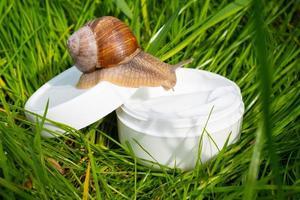 crème blanche avec mucine d'escargot sur l'herbe verte dans le jardin, beaux soins de la peau photo