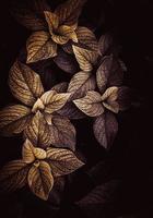 feuilles sèches dans la nature en automne photo