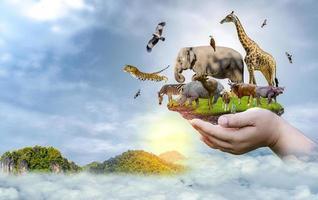 jour de la conservation de la faune animaux sauvages à la maison. ou protection de la faune photo