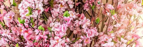 branches avec des fleurs de sakura roses sur fond flou photo
