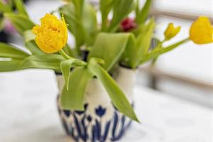 tulipes jaunes dans un vase dans le jardin photo