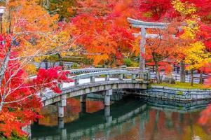 Feuillage d'automne au temple eikando à kyoto, japon photo