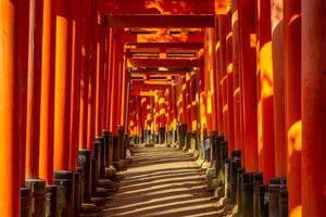 Senbon torii chemin à fushimi inari taisha, kyoto, japon photo