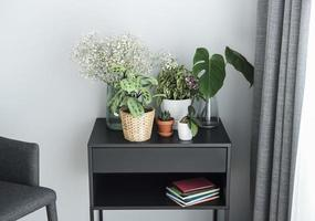 différentes plantes d & # 39; intérieur sur la table photo