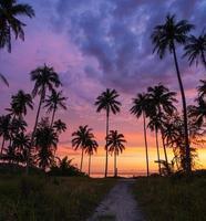 silhouette de cocotier au coucher du soleil sur la plage tropicale photo