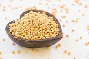 haricots de soja jaunes photo