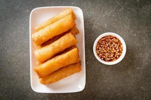 Rouleau de printemps frit avec sauce sur plaque blanche photo