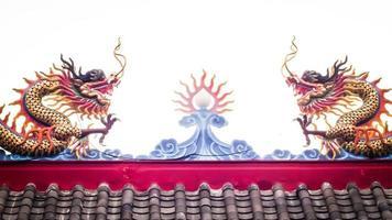 dragon chinois phénix photo