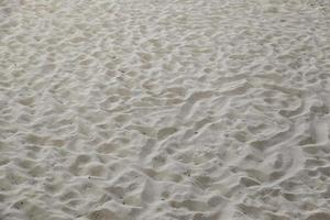 plage de sable avec dunes photo