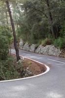 route entre les arbres. piste cyclable de Majorque photo