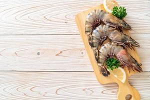 crevettes tigrées ou crevettes fraîches à bord photo
