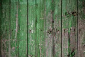 mur en bois peint en vert photo