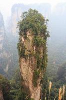 réserve naturelle de la montagne tianzi et brouillard en chine photo