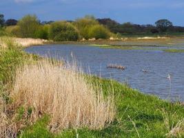 Prairie inondée à wheldrake ings North Yorkshire Angleterre photo