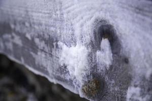sel sec sur bois photo
