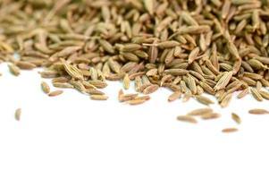 graines de cumin isolés sur fond blanc photo
