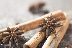 bâtons de cannelle, étoiles d'anis et grains de poivre noir sur fond texturé photo