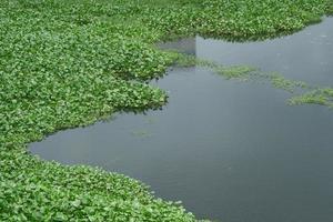pollution de l'eau avec des ordures sur l'eau photo