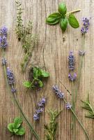 lavande et herbes fraîches sur un vieux fond en bois photo