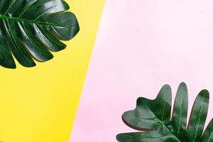 fond d'été avec des feuilles sur fond jaune et rose photo