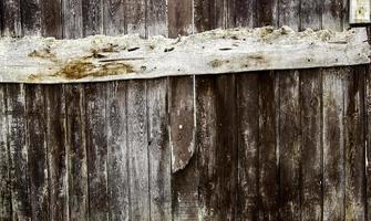 texture de mur en bois photo