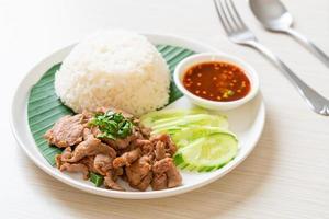 ail de porc grillé avec riz avec sauce épicée à l'asiatique photo