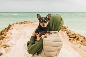 le concept d'amitié et de confiance entre un homme et un chien. chien chihuahua dans les bras d'un garçon au bord de la mer. photo