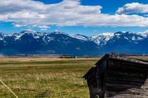 dans un champ d'agriculteurs. Polson, Montana, États-Unis photo