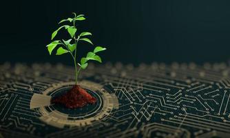 arbre en croissance avec de la terre au point de convergence du circuit imprimé de l'ordinateur photo