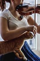 une jeune fille joue du violon près de la fenêtre avec un chat sur ses genoux photo