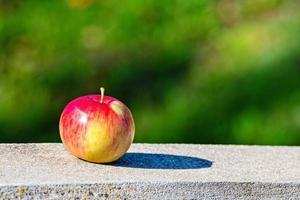 pomme sur les trottoirs de granit photo