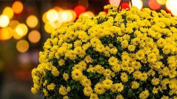 bouquet de fleurs jaunes sur fond de lumières bokeh défocalisé photo
